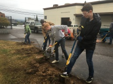 CAIS and OCHS Interact digging up grass to create a pollinator garden.